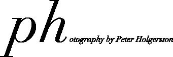 Peter Holgersson AB logo
